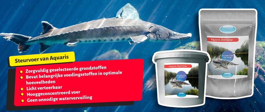 Storfutter-von-Aquaris